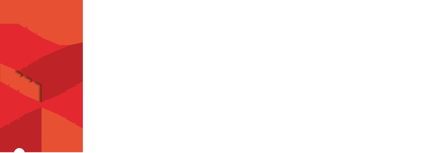 logo_controlsystem